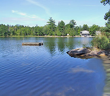 Shadow Lake 8